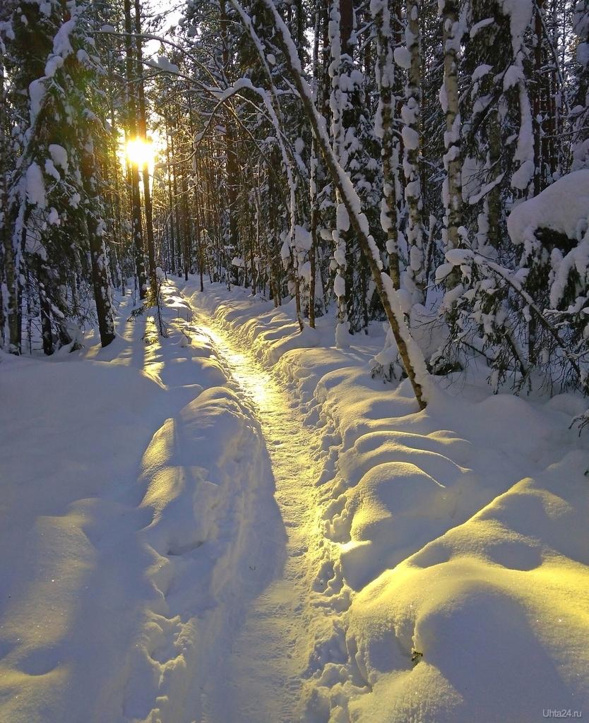 блогер снежная тропинка фото зимние надо понимать, что